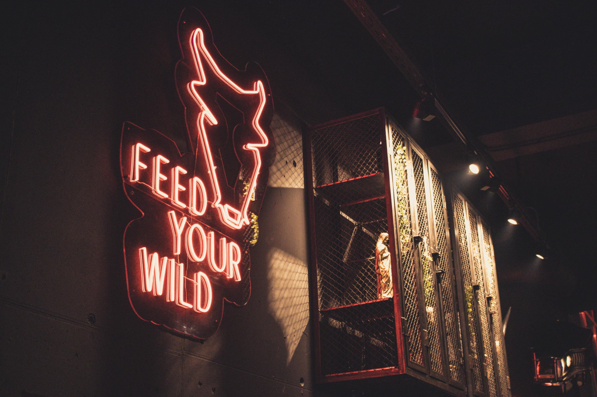 Feed your wild bull